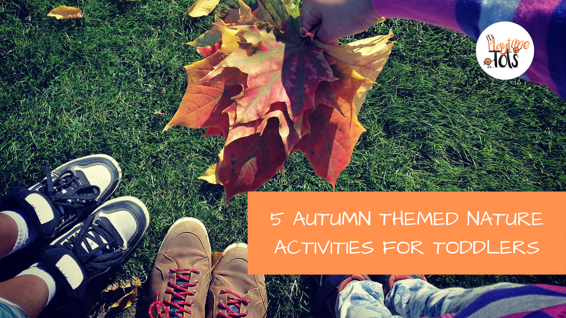 5 Autumn Themed Nature Activities for Toddlers